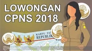 PENGUMUMAN RESMI PEMERINTAH KABUPATEN PADANG LAWAS UTARA TERKAIT PENERIMAAN CPNS 2018